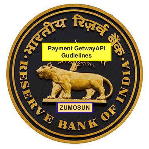 What are the  RBI Payment Gateway API Guidelines